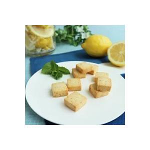 【期間限定】マクロビオティッククッキー 塩レモン【卵乳製品不使用】【直送品B】 yama