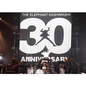 """<DVD> エレファントカシマシ / 30th ANNIVERSARY TOUR""""THE FIGHTING MAN"""