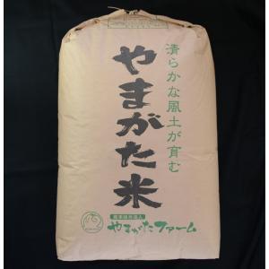 2019年山形県産はえぬき 玄米30kg (一等米・石抜き済)