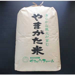 ★新米 平成30年山形県産【雪若丸】玄米 30kg 今年デビュー!|yamagata-farm