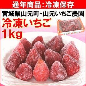 いちご 宮城県 山元いちご農園 「冷凍いちご」 1kg(約30個) 品種ミックス 送料込|yamagata-kikou