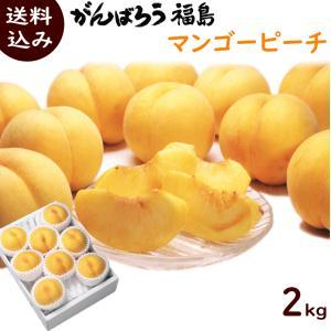 もも 送料無料 福島県産 マンゴーピーチ 2kg (6〜8玉) 贈答用 品種:黄金桃、黄貴妃|yamagata-kikou