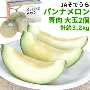 メロン JAそでうら パンナメロン 甘えんぼう 青肉 大玉2個(約3,2kg) yamagata-kikou