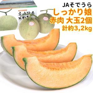 メロン JAそでうら しっかり娘 赤肉 大玉2個(約3,2kg) yamagata-kikou