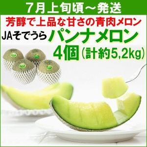 メロン JAそでうら パンナメロン 青肉4個(計約5,2kg) yamagata-kikou