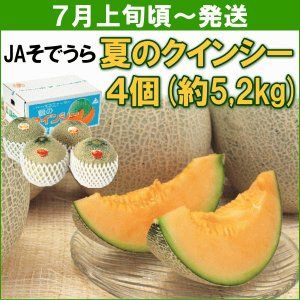 メロン JAそでうら 夏のクインシー 赤肉4個(計約5,2kg) yamagata-kikou
