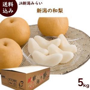 和梨 送料無料 JA新潟みらい 新潟の和梨 秀品 5kg (10〜14玉)|yamagata-kikou
