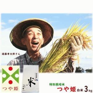 送料無料 平成30年産 山形県産 つや姫  白米 3kg 特別栽培米(農薬5割減、化学肥料5割減) 遠藤孝太郎 米 こめ 送料込み お試し|yamagata-kikou