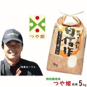 送料無料 令和元年産 山形県産 遠藤五一 つや姫 特別栽培米 白米 5kg (農薬7割減) 米 こめ ギフト