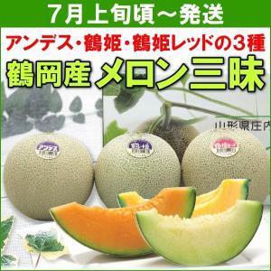 メロン JA鶴岡 メロン三昧 (アンデス・鶴姫・鶴姫レッド 各1kg) 計3個|yamagata-kikou