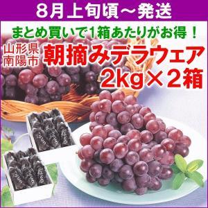 ぶどう デラウェア 送料無料 山形産 デラウェア 2kg (10〜12房)×2箱 まとめ買い yamagata-kikou