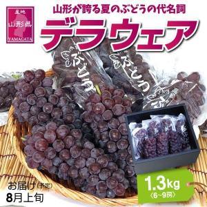 ぶどう デラウェア 送料無料 山形県産 デラウェア 1.3kg (7〜10房) yamagata-kikou