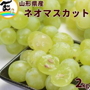 ぶどう マスカット 山形県産「ネオマスカット」 秀品 2kg(6〜8房) yamagata-kikou
