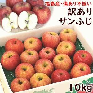 りんご 訳あり 福島県産「訳ありサンふじ(不揃い・傷あり)」 10kg 送料込