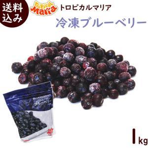 トロピカルマリア 冷凍ブルーベリー 500g×2袋