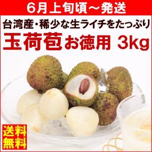 ライチ 6月上旬頃から発送・台湾産生ライチ「玉荷苞(ぎょっかほう)」 お徳用3kg(115〜130粒)