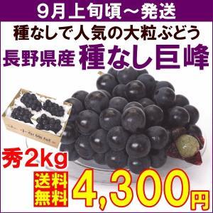 ぶどう 巨峰 9月上旬頃から発送・長野県産「種なし巨峰」 秀品 2kg(4〜6房) yamagata-kikou