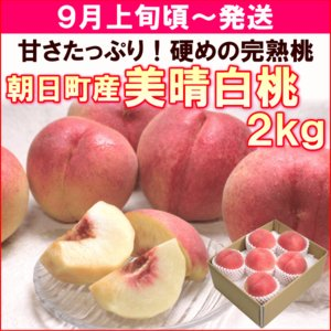 送料込&セール もも 桃 9月上旬頃から発送・山形県朝日町産「美晴白桃」 秀品2kg(6〜8個)|yamagata-kikou