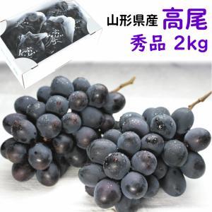 ぶどう 9月上旬頃から発送・山形県南陽市産「高尾」 秀品 2kg(3〜5房) 送料込 yamagata-kikou