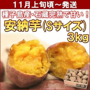 さつまいも 安納芋 鹿児島県種子島産「安納芋」 3kg(Sサ...