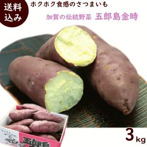 さつまいも 石川県産「五郎島金時」 3kg(10〜13本)...