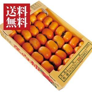 山形県産 庄内柿[27-33玉]5kg相当 yamagata-umaies