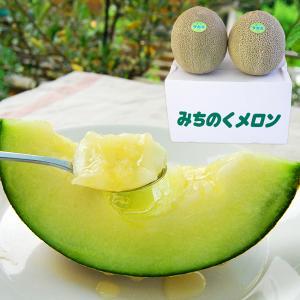 極上タカミメロン大玉2玉(青肉2玉)|yamagata-umaies