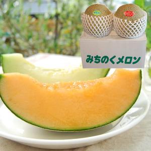 極上タカミメロン大玉2玉(赤肉1玉・青肉1玉)|yamagata-umaies