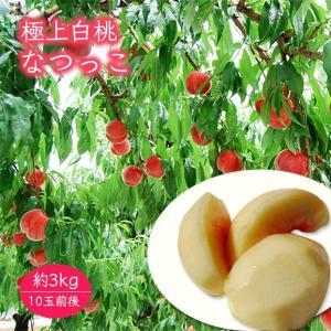 極上白桃なつっこ約3kg(10玉前後)|yamagata-umaies