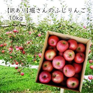 【訳あり】堀さんのふじりんご10kg<バラバラ詰> yamagata-umaies