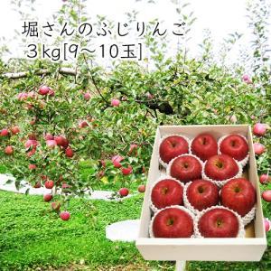 堀さんのふじりんご3kg[9〜10玉前後] yamagata-umaies