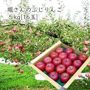 堀さんのふじりんご5kg[16玉] yamagata-umaies