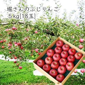 堀さんのふじりんご5kg[18玉] yamagata-umaies