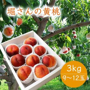 堀さんの黄桃約3kg(9〜12玉) yamagata-umaies