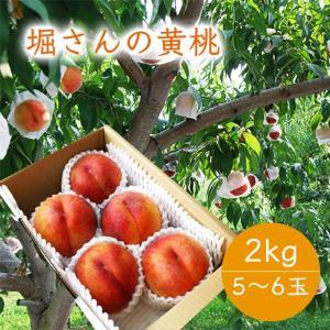 堀さんの黄桃2kg(5〜6玉) yamagata-umaies