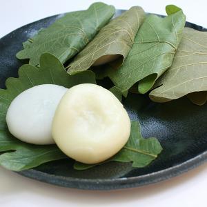 山形のかしわ餅(10個セット)<4/28〜5/3にお届け>|yamagata-umaies