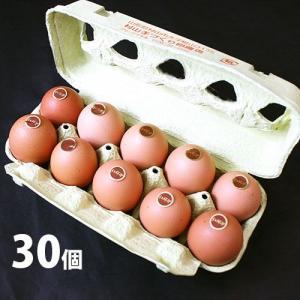こだわり卵 紅輝卵(こうきらん)30個|yamagata-umaies