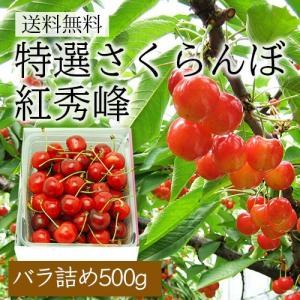 特選さくらんぼ紅秀峰500gバラ詰|yamagata-umaies