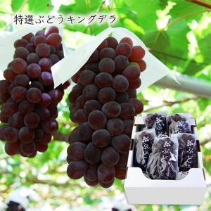 山形特選ぶどうキングデラ[種なし]約2kg(5房前後) yamagata-umaies