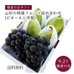 【敬老の日ギフト】特選フルーツの詰合せA(ピオーネ、洋梨) yamagata-umaies