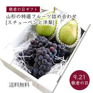 【敬老の日ギフト】山形の特選フルーツ詰合せB(スチューベン、洋梨) yamagata-umaies