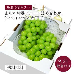 【敬老の日ギフト】山形の特選フルーツ詰合せC(シャインマスカット) yamagata-umaies