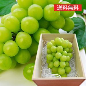 【旬果】山形の特選ぶどうシャインマスカット超特大1房[700g以上]桐箱入 yamagata-umaies