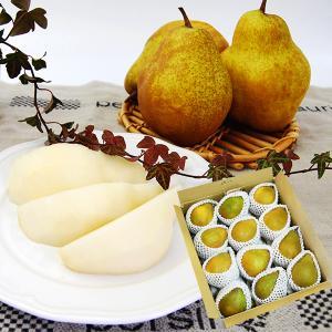山形の特選シルバーベル5kg[7玉〜13玉程度]|yamagata-umaies