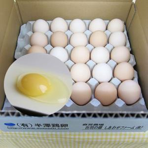 鶏卵「いではのさくら白」25個入(サイズミックス)箱入 yamagata-umaies