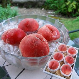 山形のプレミアム白桃2kg(5〜6玉)|yamagata-umaies