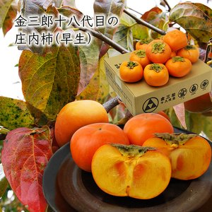 【早生】金三郎十八代目の庄内柿MM〜MAサイズ3kg(20〜24玉前後)|yamagata-umaies