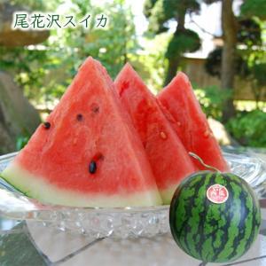 尾花沢すいか1玉(2Lサイズ×1玉)|yamagata-umaies