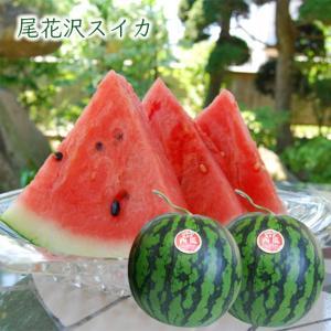 尾花沢すいか2玉(2Lサイズ×2玉)|yamagata-umaies