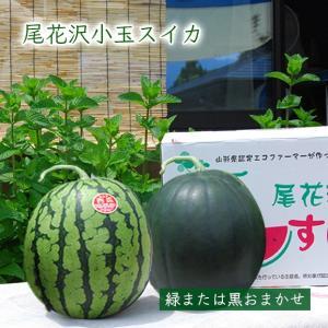 尾花沢すいか小玉2玉(緑・黒おまかせ)|yamagata-umaies